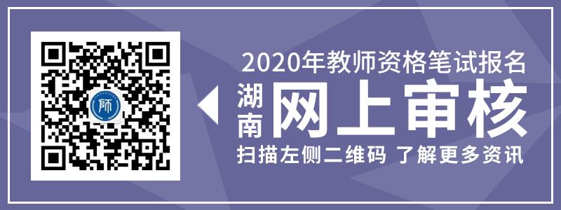 河北教师资格证笔试审核图片